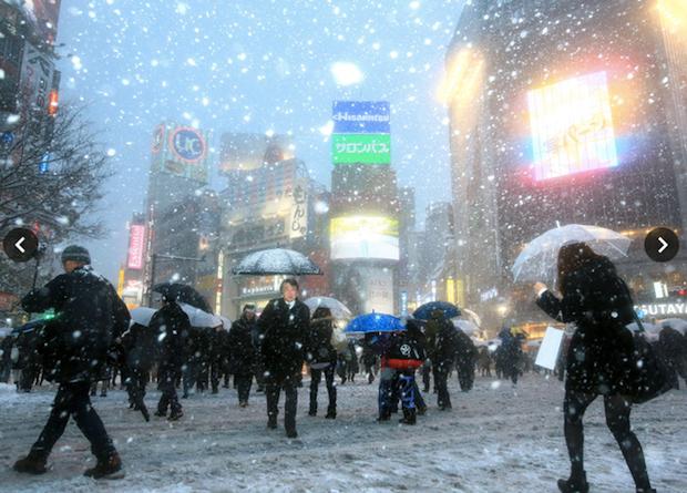 tokyo-snow-storm-2014-3